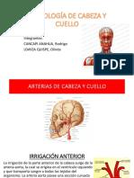 Angiología de cabeza y cuello.pptx