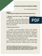 Dlscrib.com Exegesedascartaspaulinas (1)
