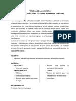 Práctica de Laboratorio-disección