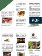 Etnomedicina Sociologia triptico.doc