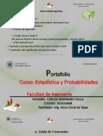 Portafolio Carlos Seminario