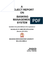 Aditi Banking of Management Report