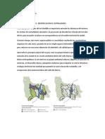 Analisis Vial y Transito