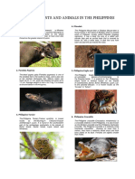 Endemic_and_Endangered_Plants_and_Animal (1).doc