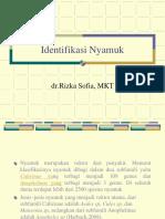 21111 Praktikum Identifikasi Nyamuk 1