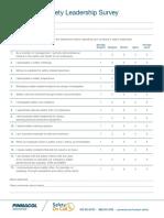 Safety-Leadership-Survey-1-120617.pdf