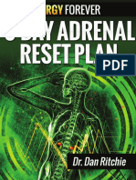 3-day-adrenal-reset-plan.pdf