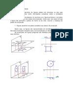 projecaodefigplanas.PDF