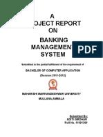 ADITI BANKING OF MANAGEMENT REPORT.doc