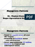 Mangrove Ecology 1