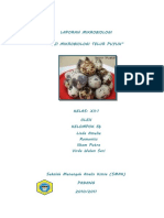 LAPORAN MIKROBIOLOGI.doc