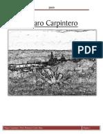 PAJARO CARPINTERO