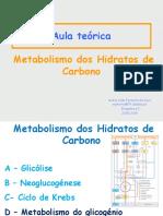 Metabolismo Dos HC - Glicogénsese e Glicogenólise 05-11-2018