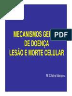 1ªaula Teórica - Mecanismos Gerais de Doença [Modo de Compatibilidade]