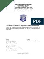 Proyecto. Mc. Marco Bru Herazo. Corregido 2019