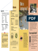 DIB Lepto Brochure MB I