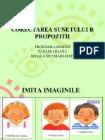 -CORECTAREA-SUNETULUI-R1-pdf.pdf