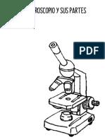 FOTOCOPIA MICROSCOPIO.pdf