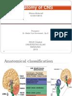 CSS Anatomi CNS