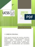 Derecho Procesal Civil i (1)
