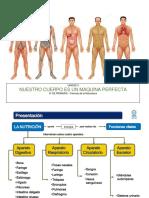 Udi 3 La Nurición ... Aparato Digestivo, Respiaratorio, Circulatorio y Excretor Web