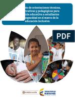 Orientaciones 2017-.pdf
