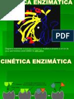 cineticaenzimatica.ppt