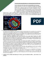 Inmunodeficiencias Adquiridas Hiv 2015 de Ana