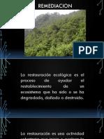 7. Restauracion.pdf