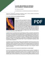 204-370-1-SM.pdf