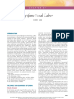 Dysfunctional Labor.pdf