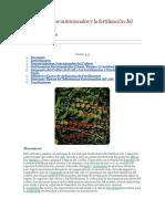 Requerimientos Nutricionales y La Fertilización Del Cultivo Del Café