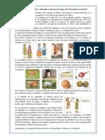 PROCERES Y PRECURSORES DEL PERU
