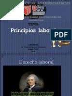 principios_laborales_.pdf