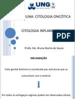 3-acitologiainflamatria-170314113123.pdf