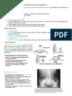 Radiología Simple de Abdomen