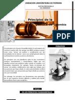 PRINCIPIOS CONSTITUCION COLOMBIA
