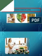 alimentacion etapas de la vida.pptx