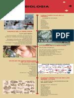 Biología  Infographics