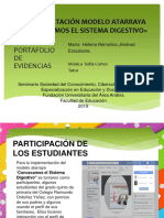 Implementación Modelo Atarraya «Conozcamos El Sistema Digestivo