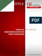 Apostila Online - Leo Mendes Agepen 14-01-2016.PDF