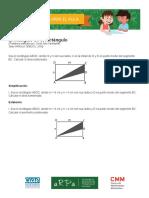 El triángulo en el rectángulo_guía_docente.pdf