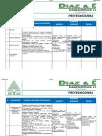 Profesiograma dyd 2019.xlsx