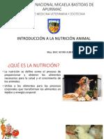 Clase 1 y 2 Introducción a La Nutricion y Fisiología Digestiva