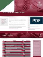 06 - USMP - Maestria en Solucion de Conflictos.pdf