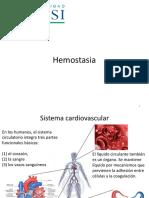 06 Hemostasis