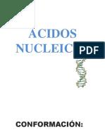 ACIDOS NUCLEICOS16