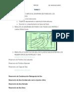 TAREA 3- pgp-221