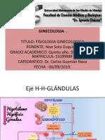 fisiología ginecóloga