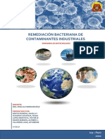 32163854-REMEDIACION-BACTERIANA-UNICA (1).pdf